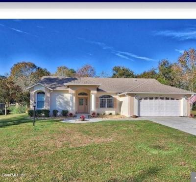 Ocala Single Family Home For Sale: 11035 SW 53rd Circle