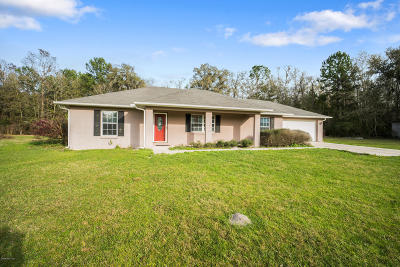 Micanopy Single Family Home For Sale: 21275 NW 150th Ave Road