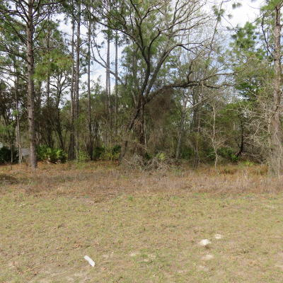 Ocala Residential Lots & Land For Sale: SW 131 Loop