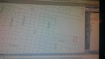 Ocala Residential Lots & Land For Sale: Water Trak