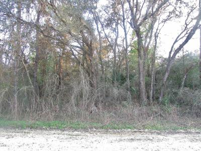 Citrus County Residential Lots & Land For Sale: 4670 W Plainfield Lane