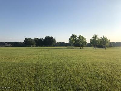 Ocala Residential Lots & Land For Sale: NW 54th Loop #15B