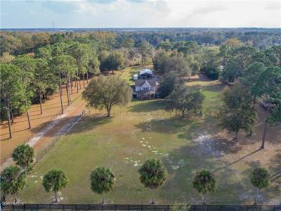 Lake County, Sumter County Single Family Home For Sale: 91 County Road 210