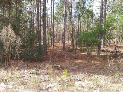 Citrus County Residential Lots & Land For Sale: 9382 N Pineview Way