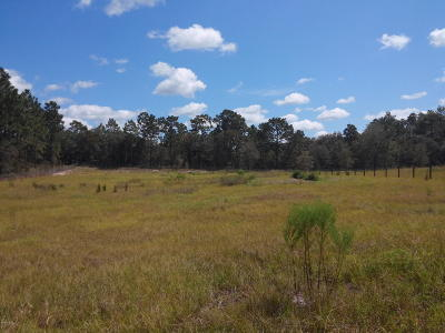 Levy County Residential Lots & Land For Sale: SE 137 Court
