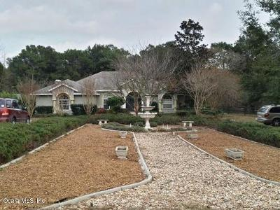 Ocala Single Family Home For Sale: 10075 SW 67th Court