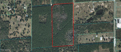 Marion County Residential Lots & Land For Sale: 16505 NW 116th Court