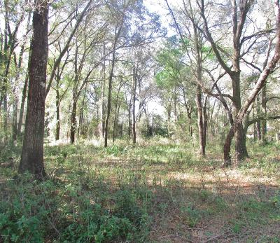 Rainbow Spgs Cc Residential Lots & Land For Sale: SW 93 Loop