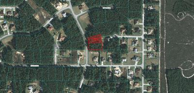 Ocala Waterway Residential Lots & Land For Sale: SW 41 Avenue