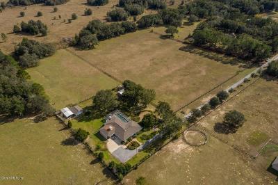 Citrus County Single Family Home For Sale: 4789 E Hillsdale Lane