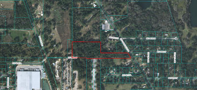 Ocala Residential Lots & Land For Sale: 2199 NW 46 Street