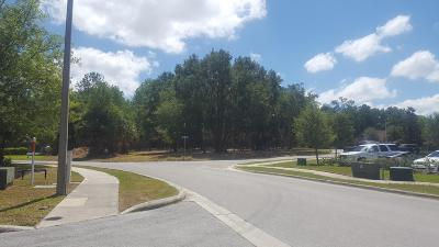 Ocala Residential Lots & Land For Sale: SW 20th Place