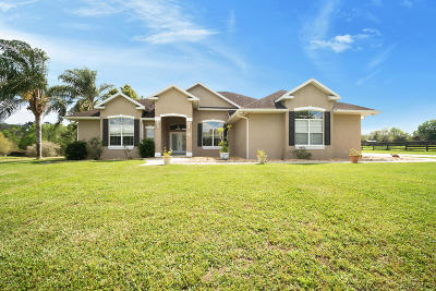 Ocala Single Family Home For Sale: 590 SW 91st Place