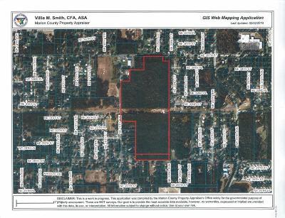 Ocala Residential Lots & Land For Sale: 2000 NE 28th Street