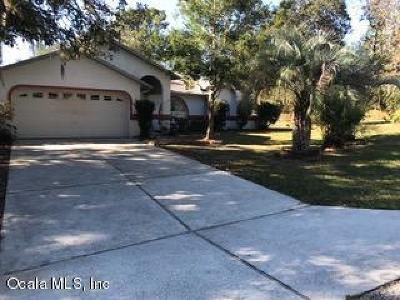 Citrus Springs Single Family Home For Sale: 575 W Bancroft Drive