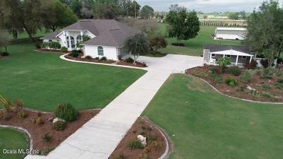 Ocala Single Family Home For Sale: 5661 NW 96th Lane