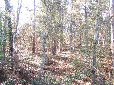 Dunnellon Residential Lots & Land For Sale: SW 201st Circle