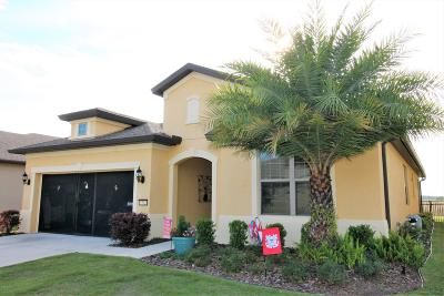 Ocala Single Family Home For Sale: 7732 SW 101 Court