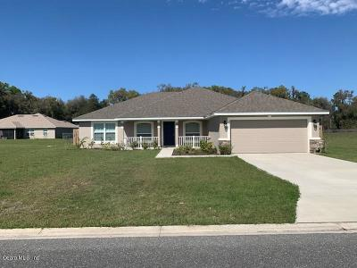 Belleview Single Family Home For Sale: 3933 SE 98th Place