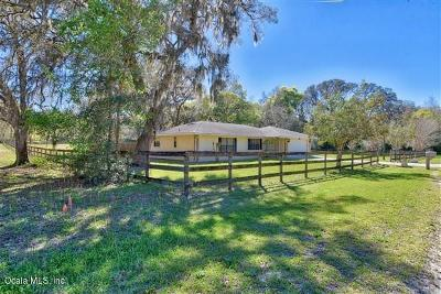 Dunnellon Single Family Home For Sale: 13774 SW 112 Street