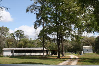 Ocala Farm For Sale: 909 NW 125th Avenue