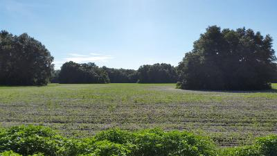 Residential Lots & Land For Sale: 20 Sr 41