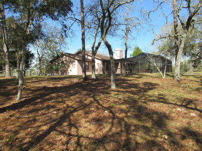Dunnellon Single Family Home For Sale: 10397 N Ranch Hand Avenue