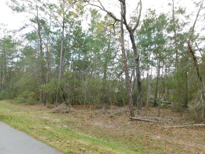 Ocala Waterway Residential Lots & Land For Sale: Lot 251 N SW 114th Place