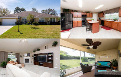 Ocala Single Family Home For Sale: 489 Lake Diamond Avenue