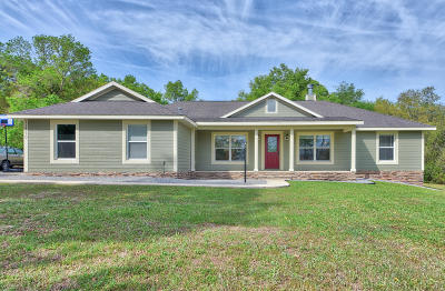 Belleview Single Family Home Pending-Continue to Show: 11770 SE 108th Terrace Road