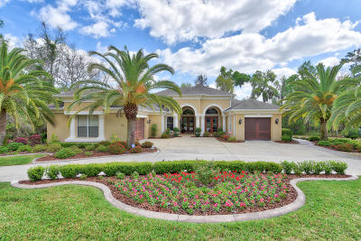 Ocala Single Family Home For Sale: 4281 SE 6th Avenue