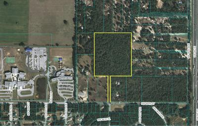 Ocala Residential Lots & Land For Sale: 4195 SW 95th Street