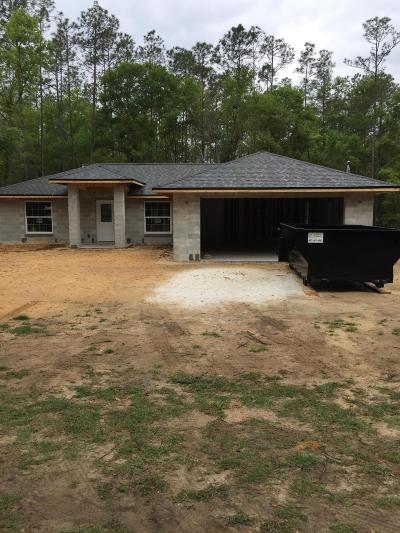 Citrus County Single Family Home For Sale: 8686 N Spikes Way