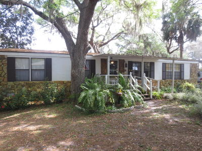 Ocklawaha Single Family Home For Sale: 16791 SE 69th Lane