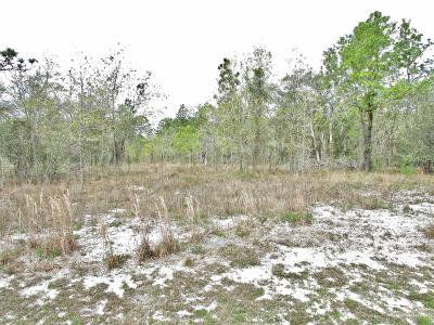 Dunnellon Residential Lots & Land For Sale: Breezy Point Drive