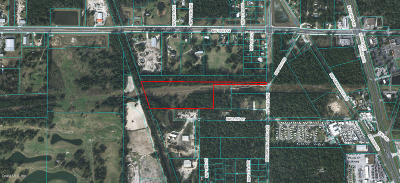 Ocala Residential Lots & Land For Sale: NW 16 Avenue