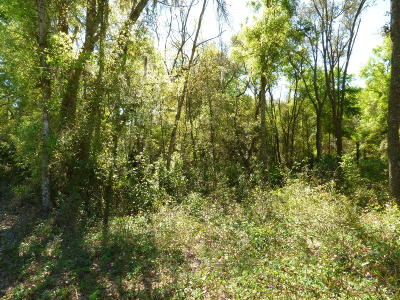 Residential Lots & Land For Sale: Lot 47 NW 170 Street