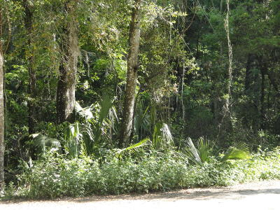 Belleview Residential Lots & Land For Sale: SE 132nd Place