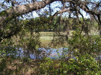 Dunnellon Residential Lots & Land For Sale: 449 & 450 SW Shorewood Drive