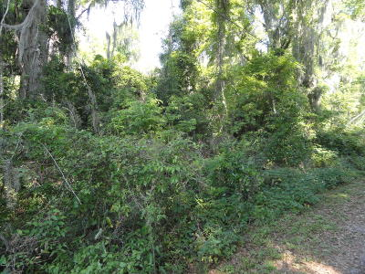Belleview Residential Lots & Land For Sale: SE 41st Terrace