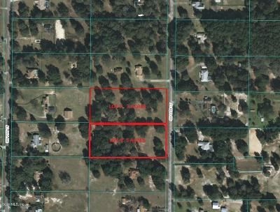 Ocala Residential Lots & Land For Sale: 10360 SW 69 Court