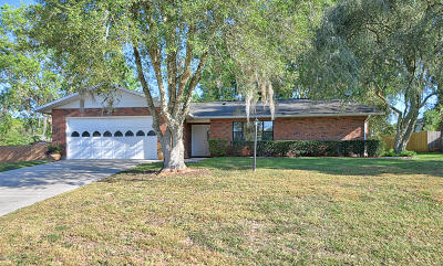 Ocala Single Family Home For Sale: 4541 SW 44th Lane