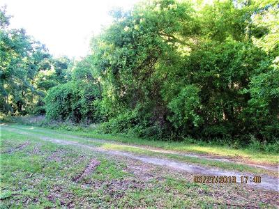 Citra Residential Lots & Land For Sale: Lot2 NW 123rd Lane