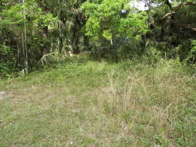 Citrus County Residential Lots & Land For Sale: 548 S Chambers Way