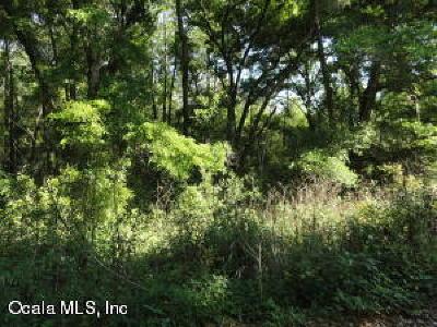 Belleview Residential Lots & Land For Sale: SE 131st Lane