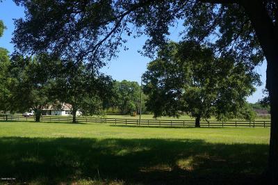 Morriston Farm For Sale: 3451 SE 186 Avenue
