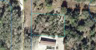 Levy County Residential Lots & Land For Sale: NE 134th Court