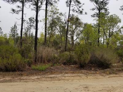 Levy County Residential Lots & Land For Sale: NE 87 Place