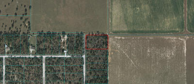 Rainbow Lake Es Residential Lots & Land For Sale: Undetermined