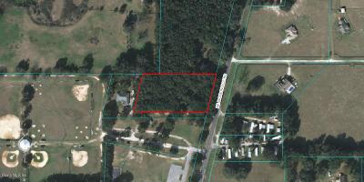 Ocala Residential Lots & Land For Sale: NE Jacksonville Rd